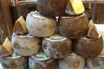 italienischer Pecorino Käse