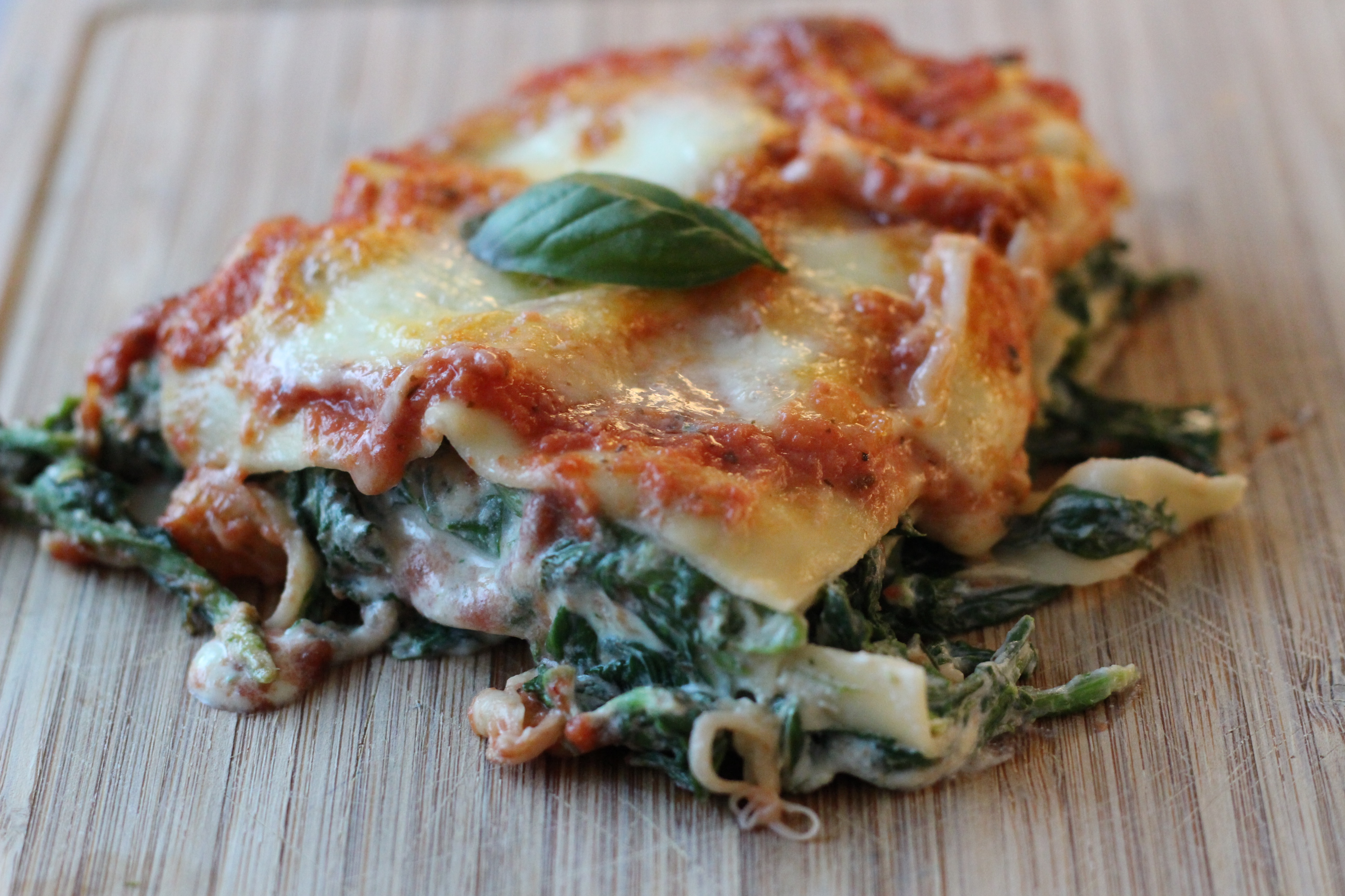 Ricotta Spinat Lasagne Italienisches Pasta Gericht
